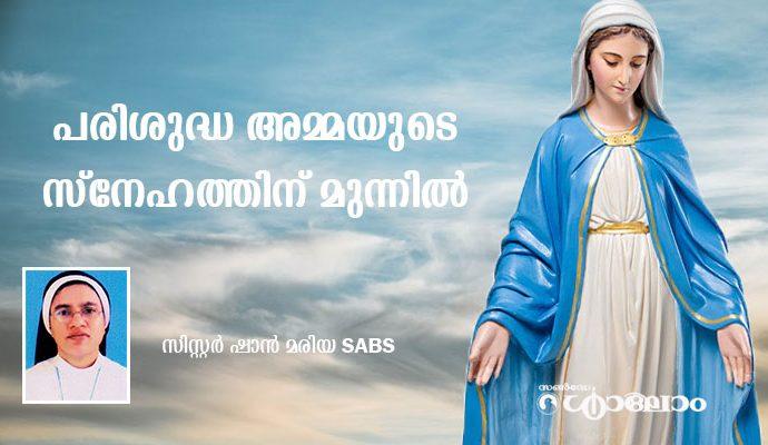പരിശുദ്ധ അമ്മയുടെ സ്നേഹത്തിന് മുന്നില്