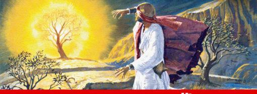 മുഖം കാണരുത്!